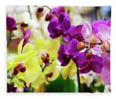 Decorative Orchids Still Life C82418 Fleece Blanket