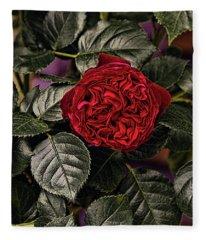 Deep Red Rose Fleece Blanket