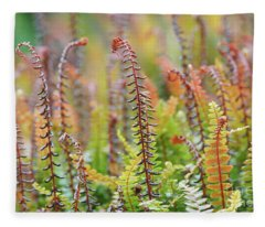 Blechnum Penna-marina Fleece Blanket