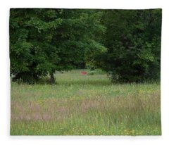 Deer In A Meadow At Dawn Fleece Blanket