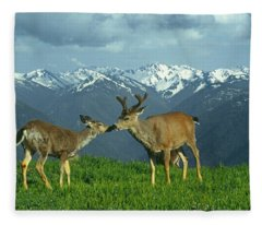 Ma-181-deer In Love  Fleece Blanket