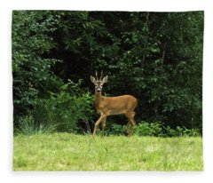 Deer In The Woods Fleece Blanket