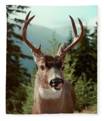 Deer Licking Fleece Blanket