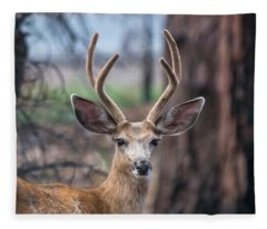 Deer Stare Fleece Blanket