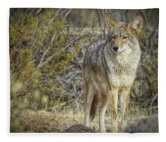 Desert And The Coyote Fleece Blanket