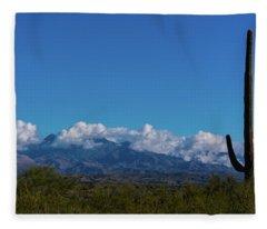 Desert Inversion Cactus Fleece Blanket
