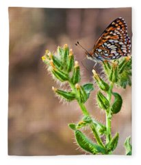 Desert Spring Life Fleece Blanket