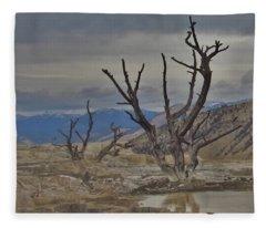 Desolate Beauty Fleece Blanket