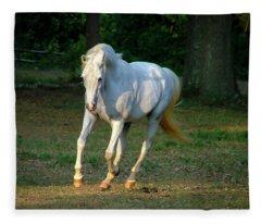 Deva Fleece Blanket