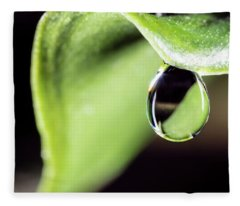 Dew Drop Fleece Blanket