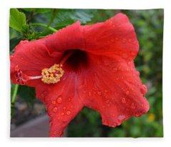 Dew On Flower Fleece Blanket