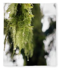 Dewy Moss Fleece Blanket