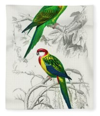 Different Illustrated Types Of Birds Fleece Blanket