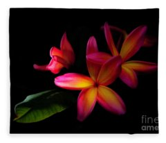 Digitized Sunset Plumerias  Fleece Blanket