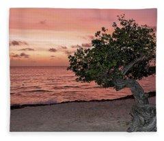Divi Divi Aruba Fleece Blanket