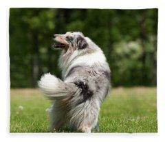 Dog I Fleece Blanket