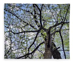 Dogwood Canopy Fleece Blanket
