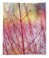 Dogwood Midwinter Fire Stems Fleece Blanket