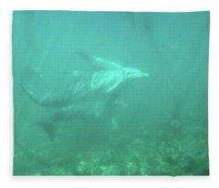 Dolphin Swim Fleece Blanket