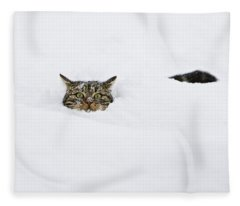 Domestic Cat Felis Catus In Deep Snow Fleece Blanket