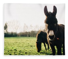 Donkey And Pony Fleece Blanket
