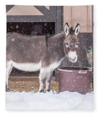 Donkey Watching It Snow Fleece Blanket