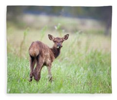 Don't Talk With Your Mouth Full. Fleece Blanket
