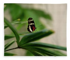 Doris Longwing Butterfly Fleece Blanket