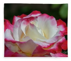 Double Delight Rose 1 Fleece Blanket