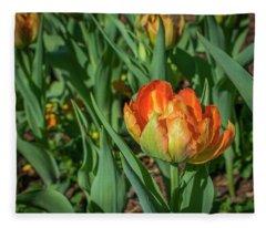 Double Multicolor Tulips Fleece Blanket