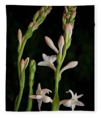 Double Tuberose In Bloom #2 Fleece Blanket