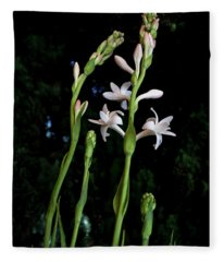 Double Tuberose In Bloom Fleece Blanket