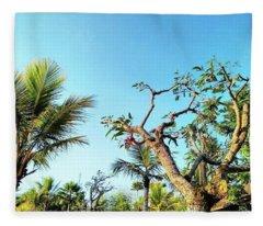 Tree And Blue Sky Fleece Blanket