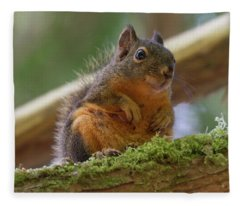 Douglas Squirrel Fleece Blanket