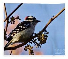 Downey Woodpecker Fleece Blanket