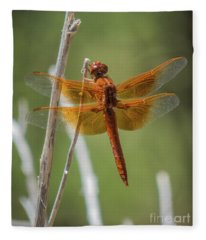 Dragonfly 10 Fleece Blanket