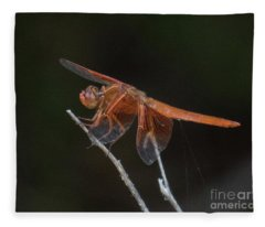 Dragonfly 11 Fleece Blanket