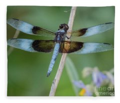 Dragonfly 12 Fleece Blanket