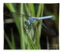 Dragonfly 13 Fleece Blanket