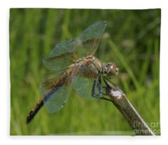 Dragonfly 8 Fleece Blanket