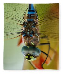 Dragonfly In Thought Fleece Blanket