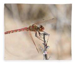 Dragonfly Resting Fleece Blanket