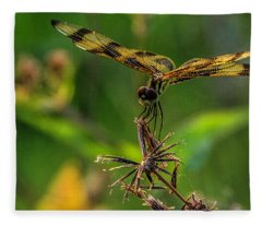 Dragonfly Resting On Flower Fleece Blanket