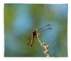 Dragonfly Wings Fleece Blanket