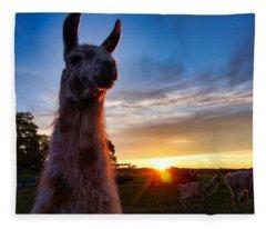 Drama Llamas Fleece Blanket