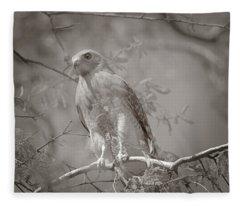 Dreaming Of A Hawk Fleece Blanket