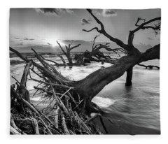Driftwood Beach 8 Fleece Blanket