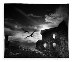Dryslwyn Castle 3b Fleece Blanket
