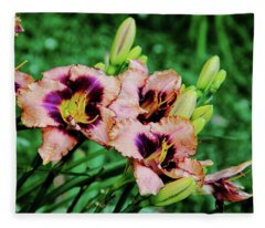 Dual Color Lily Fleece Blanket
