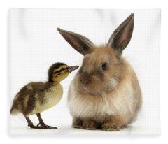 Duck Out Bunny Fleece Blanket